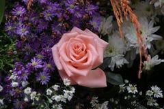 Rosa färgros och många coloful blommor arkivfoton