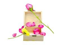 Rosa färgros på den lilla träasken Royaltyfri Foto