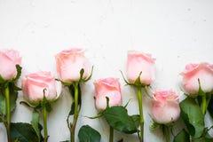 Rosa färgros på den vita stentabellen arkivbilder