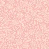 Rosa färgrosbakgrund Royaltyfria Bilder