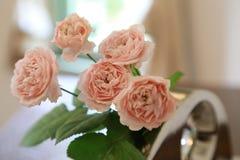 Rosa färgrosen som visas på tabellen Royaltyfri Bild