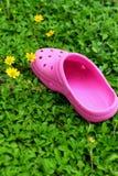 Rosa färgskor på gräs - i trädgården Arkivbild