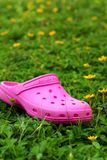 Rosa färgskor på gräs - i trädgården Arkivfoto