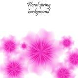 Rosa färgvårbakgrund med genomskinliga blommor Royaltyfri Bild