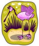 Rosa fågel med långa ben Royaltyfria Foton