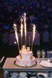 Rosa födelsedagkaka Royaltyfri Foto