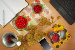 Rosa förberedelse av tinkturhunden och hagtorn, telefon, bärbar dator, guld- blomma Royaltyfria Bilder