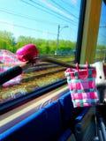 Rosa Fahrrad auf einem Zug Stockfoto