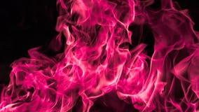 Rosa Feuerflammenhintergrund Lizenzfreies Stockfoto
