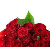 Rosa fiorisce il bordo Fotografia Stock