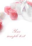 Rosa fiorisce il colore rosa ed il bianco fatti di sapone Fotografia Stock Libera da Diritti