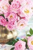 Rosa fiowers Stockbilder