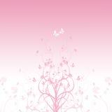 rosa fjäder Arkivfoto