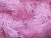 Rosa fjäderbakgrund - materielfoto arkivbild