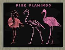 Rosa Flamingo auf Kreidebrett Lizenzfreie Stockbilder