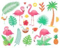 Rosa flamingo och tropiska växter Stranden gömma i handflatan, afrikanska växtblad, rainforestblomma, gömma i handflatan vändkret vektor illustrationer