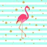 Rosa flamingofågel vektor illustrationer