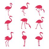 Rosa flamingosilhouetes som isoleras på vit bakgrund stock illustrationer