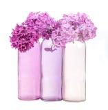 Rosa Flieder in den rosa Vasen Lizenzfreie Stockfotografie
