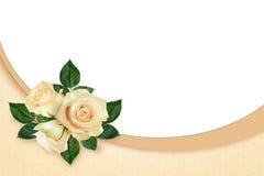 Rosa floresce a composição e o quadro Imagens de Stock Royalty Free