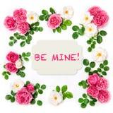 Rosa floresce a configuração floral do plano do dia de Valentim Fotos de Stock Royalty Free
