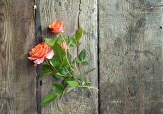 Rosa floresce no envelope do papel do ofício sobre o fundo de madeira Foto de Stock