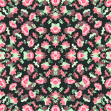 Rosa färgen blommar på mörk bakgrundsvektorillustration Arkivfoto