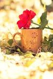 Rosa frukost och kopp kaffe Royaltyfri Bild