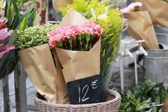 Rosa Gartennelke für Verkauf stockbilder