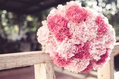 Rosa Gartennelkenblumenstrauß Stockfotografie