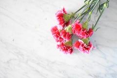 Rosa Gartennelkenblumenstrauß stockfoto