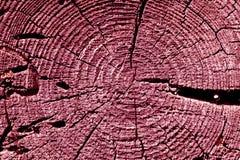 Rosa getonte alte Baumschnittbeschaffenheit Lizenzfreies Stockbild