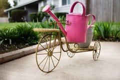 Rosa Gießkanne, die ein Dreirad reitet Stockfoto
