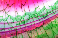 Rosa grünes Dragon Vein Agate Pattern Stockfotografie