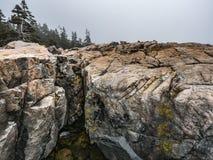 Rosa Granit-Küstenlinie mit Nebel, Schoodic-Punkt Lizenzfreie Stockbilder