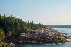 Rosa granittjock skiva fodrar den ojämna shorelinen i Maine Royaltyfri Foto