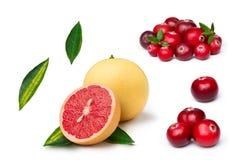 Rosa grapefrukt med tranbäret Arkivfoton