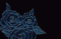 Rosa gravou no fundo escuro da lona Arte tirada mão do lápis ilustração stock