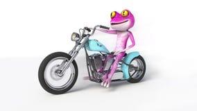 Rosa groda på motorcykeln Arkivbilder
