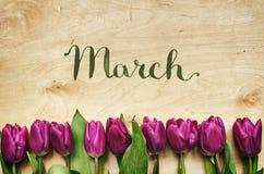 Rosa, grupo das tulipas no fundo claro da madeira compensada Espaço para o texto, Imagem de Stock Royalty Free