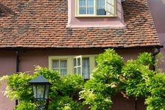 Rosa Häuschen mit Bäumen Stockfoto