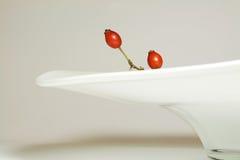Rosa höfter i en vit vas Fotografering för Bildbyråer