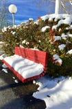 Rosa ha colorato il banco con il palo di luce bianca e della neve fotografia stock libera da diritti