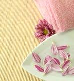 rosa handduk för blommapetals Arkivfoton