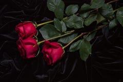 Rosa hermosa del rojo en el satén negro Foto de archivo libre de regalías