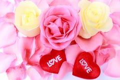Rosa hermosa y corazón rosados y blancos para el día de tarjeta del día de San Valentín. Foto común. Imagen de archivo