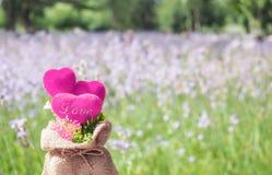 Rosa Herzen mit Naturblumengartenhintergrund Lizenzfreies Stockbild