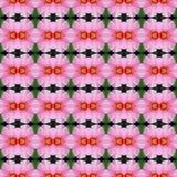Rosa Hibiscusblume nahtlos vektor abbildung