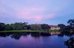 Rosa himmel vid morgon Royaltyfria Bilder