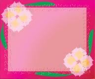 Rosa Hintergrund Stockbilder